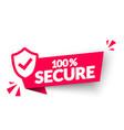 100 percent secure label modern web banner vector image vector image