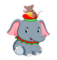 a little elephant play with a cute mouse on hat vector image vector image