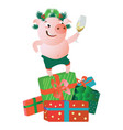 a pig standing on gift boxes and giving a speech vector image vector image