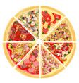 a set of slices of a variety of pizza vector image
