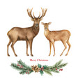 christmas reindeer with a green fir branch vector image vector image