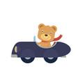 happy little bear riding a blue car vector image vector image