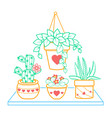 houseplant of a room icon vector image vector image