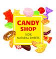 lollipop candy shop concept background cartoon vector image vector image