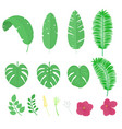 set of tropical green leaves and flowers vector image