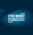 cyber monday advertizing banner design wide vector image