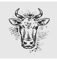 head cow vector image vector image