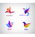 set bird logos icons in vector image vector image