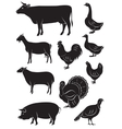 set icons with farm animals and birds vector image vector image