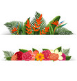 two design of flower decorations vector image vector image