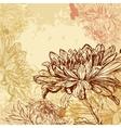 Chrysanthemum background vector image