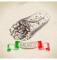 Mexican traditional food background with burrito vector image vector image