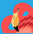 portrait a flamingo vector image vector image