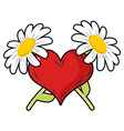 Red heart and crossbones flowers Chamomile and vector image