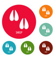 sheep step icons circle set vector image