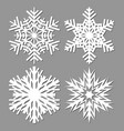 snowflake isolated on gray background vector image vector image