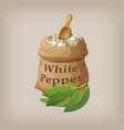 white pepper corn in the bag vector image vector image