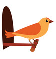 yellow bird on white background vector image vector image