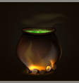 a cauldron for halloween witch a pot for a witch vector image vector image