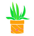 flower weighing aloe vector image vector image