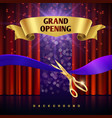 grand opening concept with red curtains vector image vector image