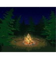 Landscape with bonfire vector image vector image