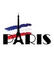 paris flag vector image