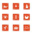 resort icons set grunge style vector image