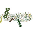 your dog is a social animal and needs you text vector image vector image