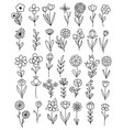 0087 hand drawn flowers doodle vector image vector image