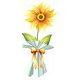A sunflower vector image vector image