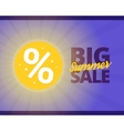 big summer sale vector image vector image