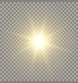 yellow realistic sun vector image vector image