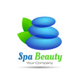 abstract stones and leaves Concept spa yoga relax vector image