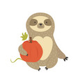 cute sitting sloth with pumpkin character design vector image vector image