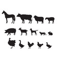 farm animals silhouette icon set livestock vector image