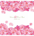 Pink flowers card isolated on white vector image vector image