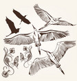 set of hand drawn birds and swirls vector image vector image