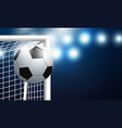 soccer goal and football with spotlight vector image vector image