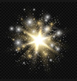 star burst with sparkles golden and silver light vector image