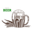 beer glass or mug with ears wheat craft beer vector image vector image