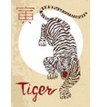chinese zodiac symbol of etching tiger vector image