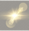 golden lens flare camera effect vector image