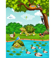 Turtles and ducks at the river vector image vector image