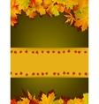 Autumn card of colored leafs EPS 8 vector image vector image