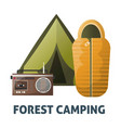 camping camp tent and sleeping bag vector image vector image