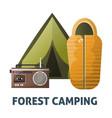 camping camp tent and sleeping bag vector image