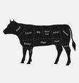 cuts beef vector image