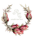 roses wreath watercolor spring summer vector image vector image