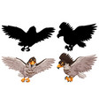 set hawk and its silhouette vector image vector image